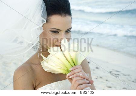Caribbean Beach Wedding - Bride With Bouquet