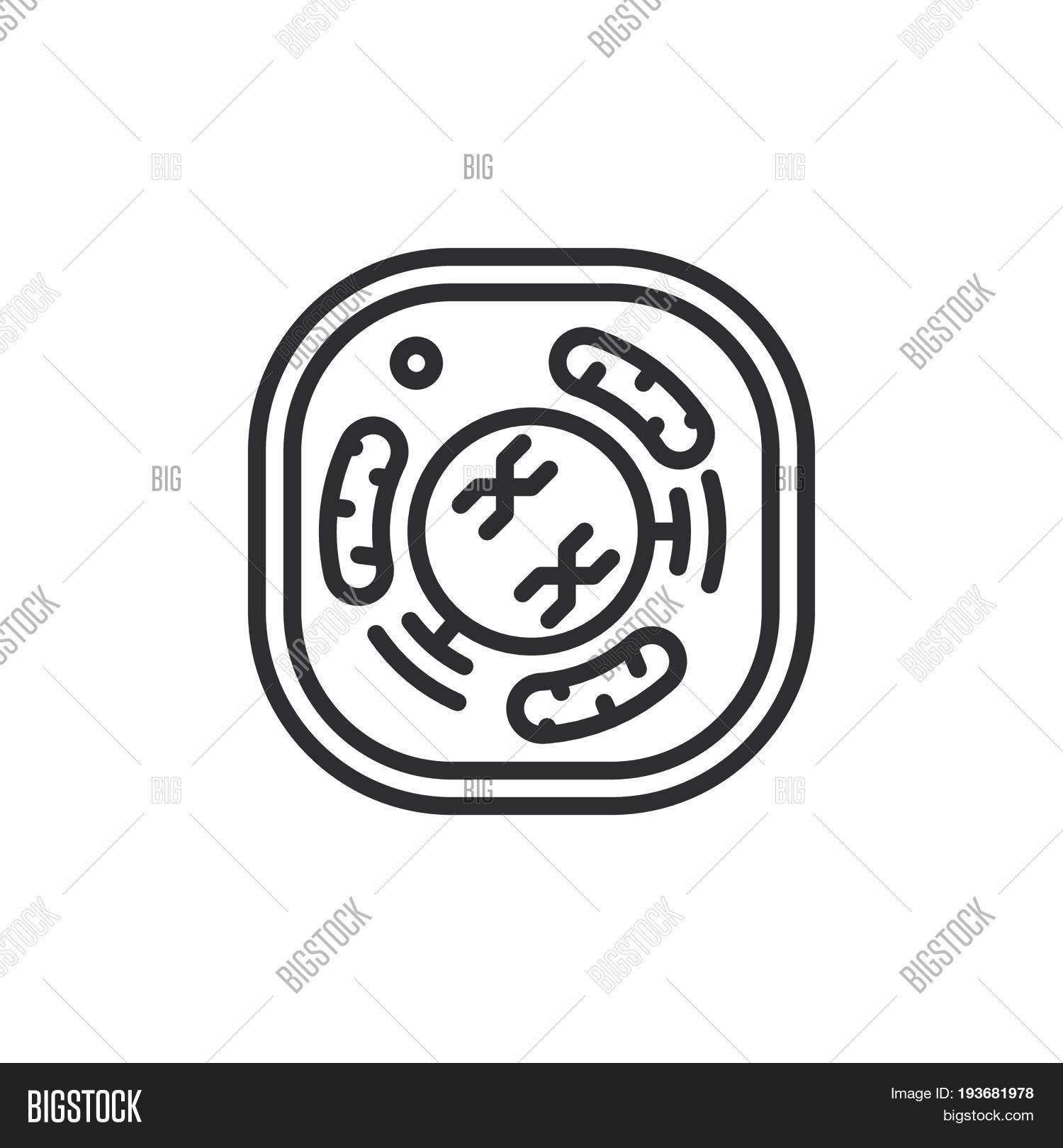 Cell Line Icon Vector & Photo (Free Trial) | Bigstock