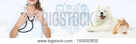 veterinary care concept. veterinarian with stethoscope dog and cat with heart shape graphic symbols isolated on white background