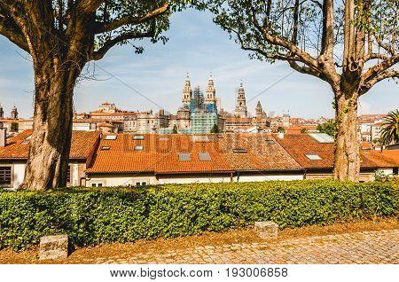 Santiago de Compostela's Cathedral between trees. Spain.