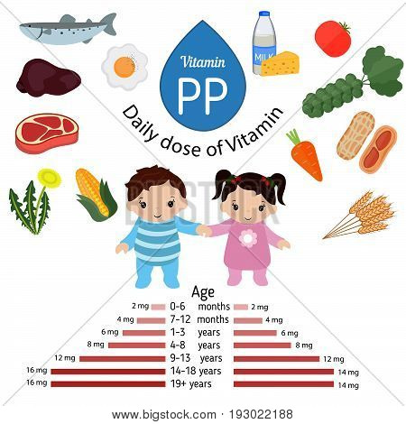 Vitamin PP or Nicotinamide and vector set of vitamin PP rich foods. Healthy lifestyle and diet concept. Daily doze of vitamin PP.