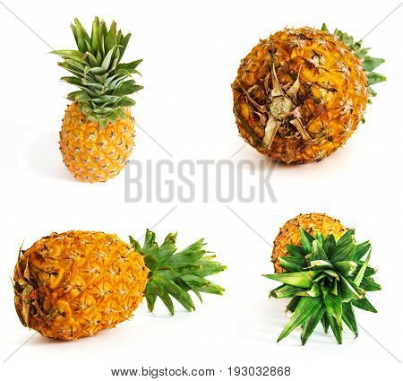 ripe pineapple on white background, pineapple on isolated background. juicy fruit with a bright feed