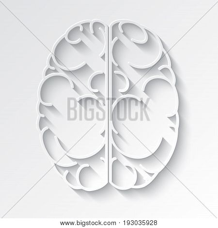 Decorative vector image of the human brain.