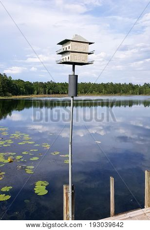 Bird house on a dock at a lake in northern Florida