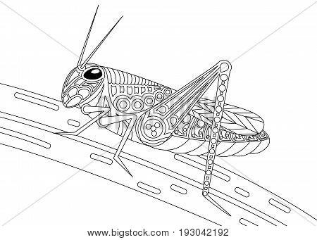 Vector monochrome grasshopper coloring page black over white.