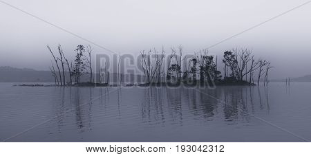 Dark and gloomy landscape of an island on a lake in low light