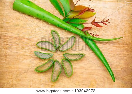 Aloe Vera has many benefits in terms of health and beauty.