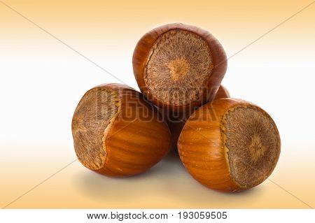 Extreme close-up image of hazelnuts studio isolated on white background