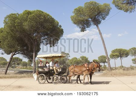 El Rocio Spain - June 1 2017: Pilgrims in a horse-drawn carriage on the road to El Rocio during the pilgrimage Romeria 2017. Province of Huelva Almonte Andalusia Spain