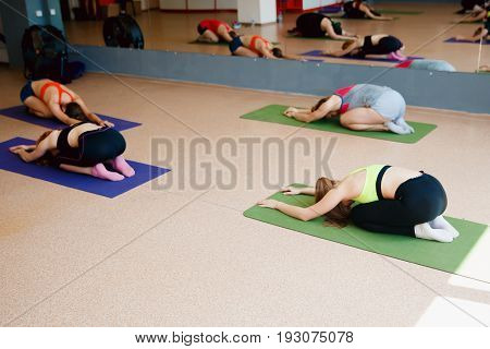 group of girls is engaged in stretching for yoga fitness. The concept of maintaining a toned body.
