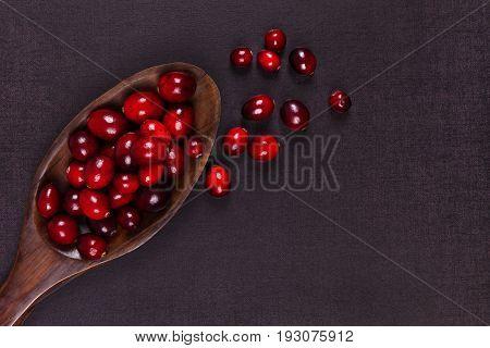 Fresh red cranberries in spoon on dark background top view. Healthy fruit eating.