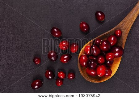 Delicious fresh cranberries in wooden spoon on dark surface top view.