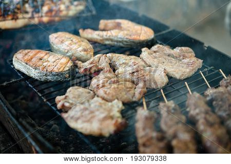 Barbecue, barbecue, barbecue in the park and pork barbecue shish kebab on the coals.