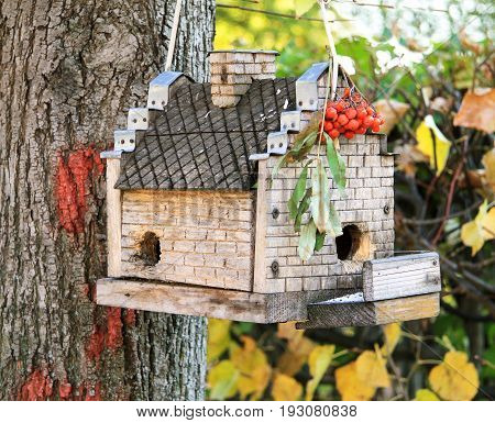 Beautiful bird feeder in an autumn forest hanging on a tree