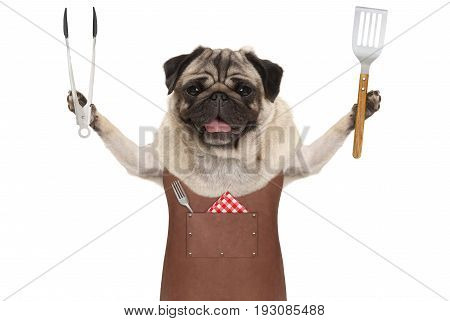smiling pug dog wearing leather barbecue apron holding meat tong and spatula isolated on white background