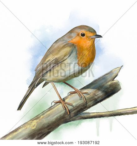 European robin perched on a brand. Original digital watercolor.
