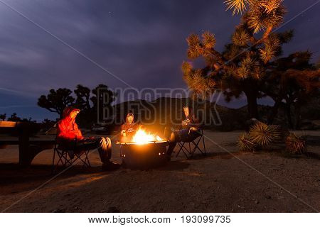 Group of young people sitting by campfire during night in joshua tree national park - concept of camping, traveling, freedom, adventure