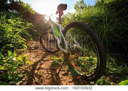 one mountain bike on sunrise forest trail