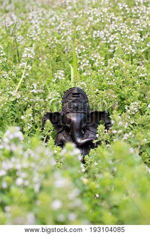 Hindu God Ganesha. Ganesha Idol in green grass