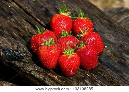 fresh rip red strawberries on wooden backgroung