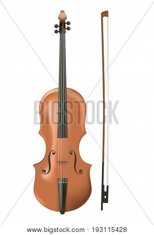 Cello on white background. Music instrument vector illustration