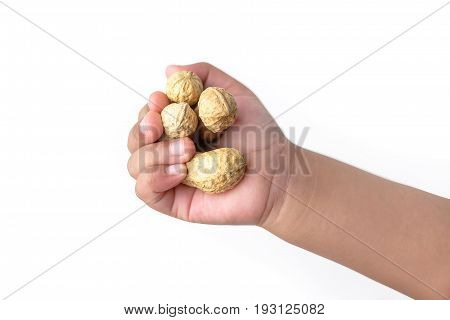 Child's hand holding a peanuts isolated on a white background