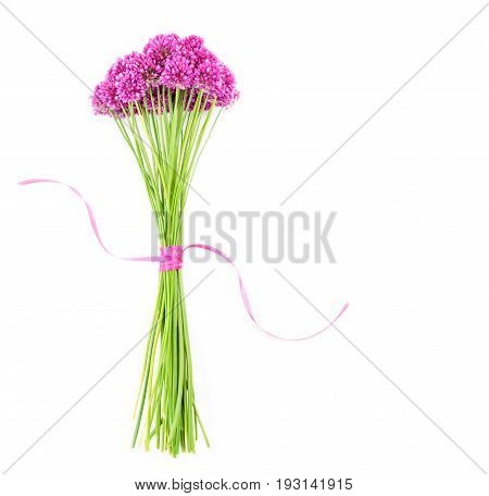 bouquet of beautiful purple flowers allium tied with a purple ribbon on white background with space for your text. Flat lay top view