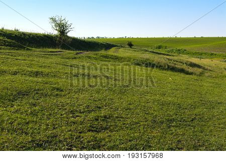 A dirt road on the field. The road passes along the top of a beautiful field