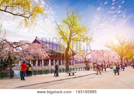 Seoul, Korea - April 12, 2015: Gyeongbokgung Palace With A Lot Of People And Cherry Blossom In Sprin