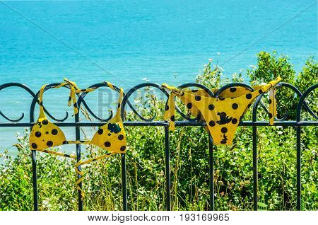 Metal Ornament On A Balustrade In A Seaside Village, Symbolic Element In The Form Of A Swimsuit