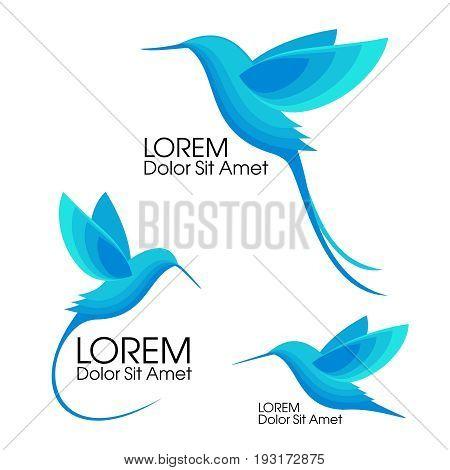 Modern Set . Blue birds, Colibri in flight, trendy minimalistic template design for logos, emblems, symbols