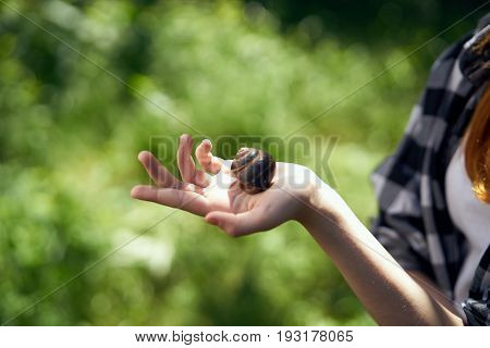 Summer, garden, sun, woman holding a cochlea, grass, plants, insects.