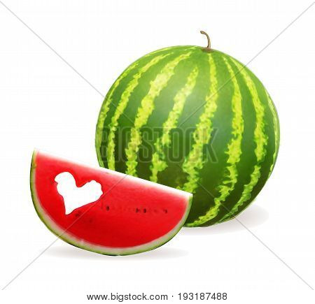 Watermelon realistic vector illustration. Slice of watermelon with heart
