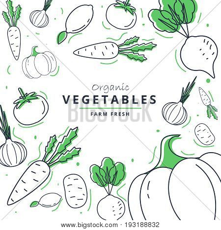 Farm Fresh Vegetables Poster. Sketch Style Vector Illustration.vegetables Big Set.