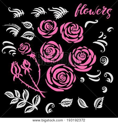 Hand drawn floral set with rose flowers decor elements and leaves in pink and white colors.