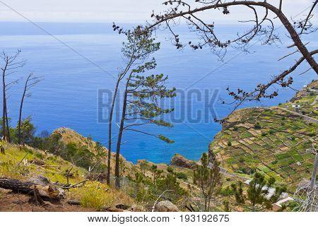 Picturesque view on Atlantic Ocean coast near Mirador de Cabo Girao on Madeira island Portugal