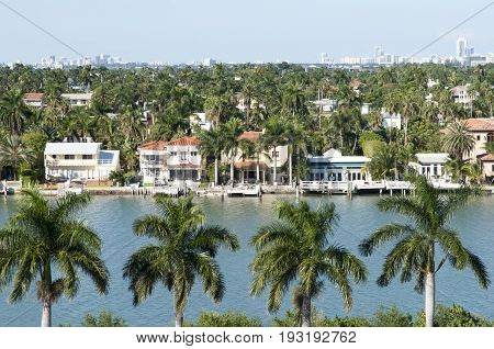 The view through palm trees of Palm Island the residential district in Miami (Florida).