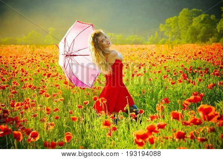 woman with long curly hair in red dress hold pink umbrella in field of poppy seed flower on green stem on natural background summer drug and love intoxication opium