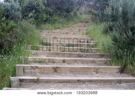 Outdoor Wooden Stairs in an Australian Park