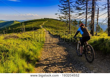 Mountain biking women riding on bike in summer mountains forest landscape. Woman cycling MTB flow trail track. Outdoor sport activity. poster