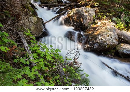 Water rushes down a steep mountain stream at Rocky Mountain National Park.