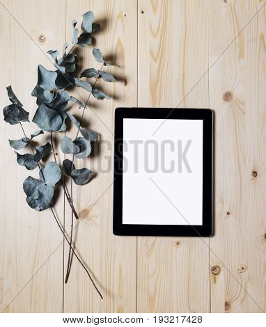 Tablet with a clean blank screen monitor with a branch of eucalyptus on a wooden background with natural wood planks top view vertical digital computer with blank template copy space screen for your information or content touch pad with empty display and