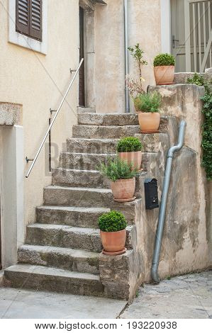 Stone Stairs With Flower Pots