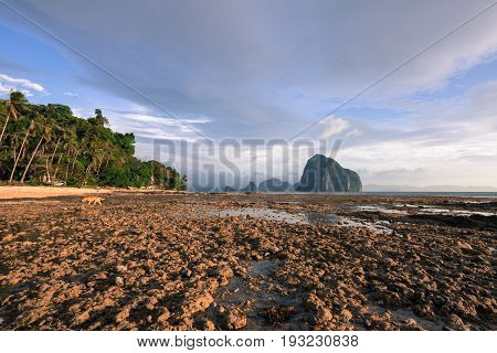 EL NIDO, PALAWAN, PHILIPPINES - MARCH 29, 2017: Wide angle view of some rocks and trees at Las Cabanas Beach.