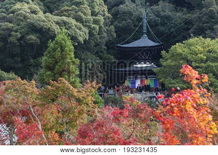 KYOTO JAPAN - 20 NOVEMBER 2015: Eikando pagoda against autumn foliage in Eikan-do Zenrinji temple in Kyoto Japan. This place is very famous for its autumn colors foliage