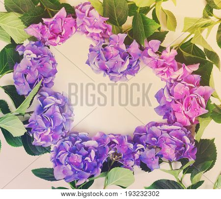 blue and violet hortensia flowers heart frame pattern on white background, retro toned