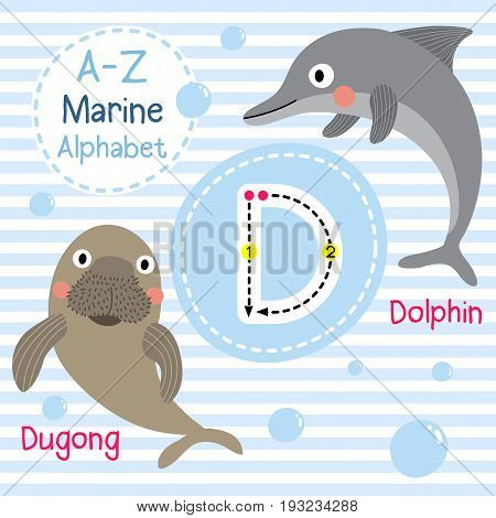 Cute children sea alphabet flashcard of funny marine animal cartoon D letter tracing for kids learning English vocabulary vector illustration.