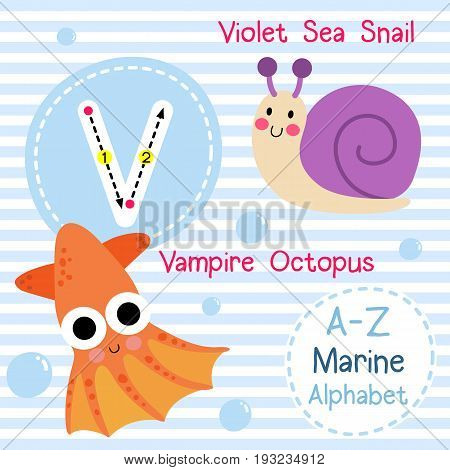 Cute children sea alphabet flashcard of funny marine animal cartoon V letter tracing for kids learning English vocabulary vector illustration.