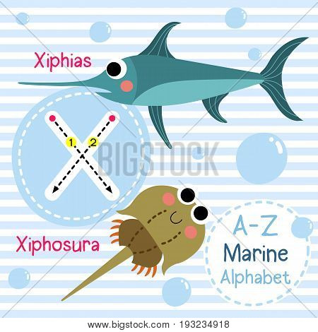 Cute children sea alphabet flashcard of funny marine animal cartoon X letter tracing for kids learning English vocabulary vector illustration.
