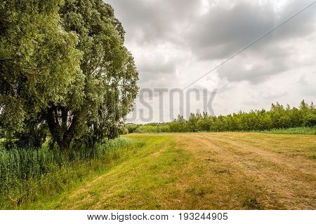 Dutch landscape with a curved dike on a cloudy day in the summer season.